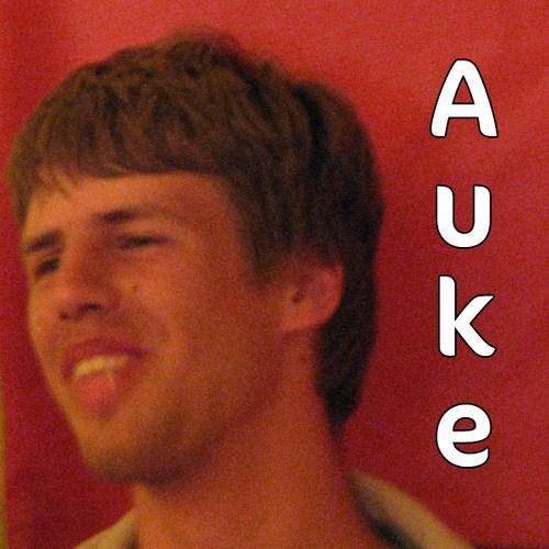 auke (deelnemer2013)